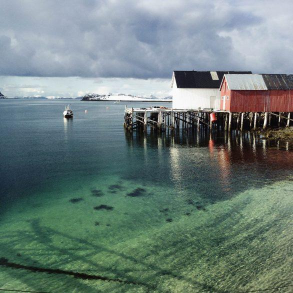 öksfjord (2 of 4)